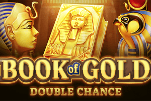 Book of Gold: Double Chance автомат